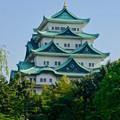 写真: 名城公園から見上げた名古屋城天守閣 - 12