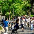Photos: 大勢の人で賑わってた東山動植物園(2017年5月28日) - 5