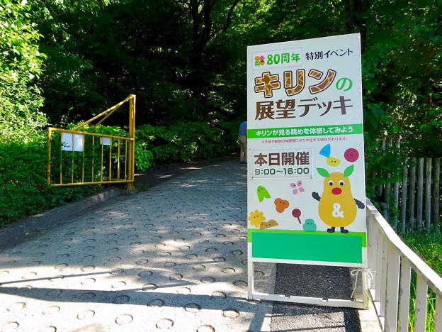 東山動植物園:キリン展望デッキ - 2
