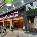 大須商店街 万松寺(2017年7月1日) - 1:ディスプレイに蓮の花