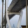 金城ふ頭から見上げた名港中央大橋 - 9