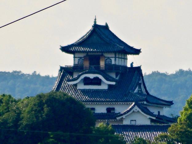 写真: 犬山駅から見えた、落雷でシャチホコが壊れた犬山城(2017年7月15日) - 4