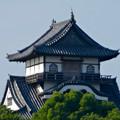 写真: 犬山城下町から見上げた、落雷でシャチホコが壊れた犬山城(2017年7月15日) - 3