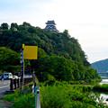 写真: 木曽川沿いから見上げた、落雷でシャチホコが壊れた犬山城(2017年7月15日) - 14