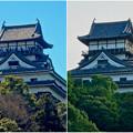 写真: 落雷でシャチホコが破損した数日後の犬山城と2年前(2015年3月)の犬山城比較 - 1