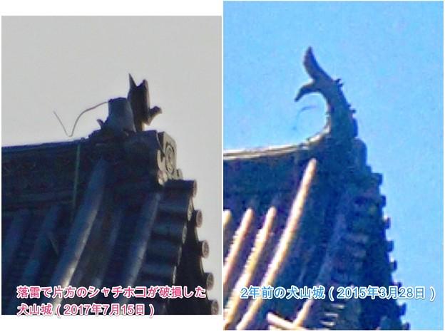 写真: 落雷でシャチホコが破損した数日後の犬山城と2年前(2015年3月)の犬山城比較 - 8