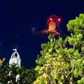 名古屋みなと祭 2017 No - 32:お化け型の花火?