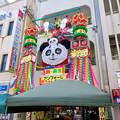 安城七夕まつり 2017 No - 36:パンダの七夕飾り