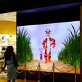 Photos: 今月始め(8月1日)にオープンしたばかりの「ディズニーストア 名古屋ゲートタワーモール店」 - 2