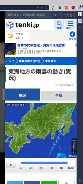 Vivaldi WEBパネル:Tenki .jpの雨雲レーダー - 2(東海地方)