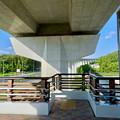 公園西駅前から見たリニモの橋脚 - 1