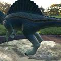 Photos: 3Dモデル共有サービス「Sketchfab」公式アプリ - 45:3DモデルをAR!(スピノサウルス)