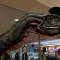 写真: 3Dモデル共有サービス「Sketchfab」公式アプリ - 78:3DモデルをAR!(ディロフォサウルス)
