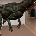 写真: 3Dモデル共有サービス「Sketchfab」公式アプリ - 79:3DモデルをAR!(ディロフォサウルス)