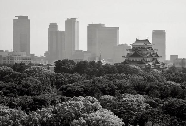 名駅ビル群と名古屋城 - 3