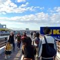 写真: オープン1ヶ月後でも大勢の人で賑わう「IKEA長久手」 - 5