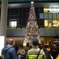 写真: ゲートタワー前のクリスマスツリー(2017年11月12日) - 3