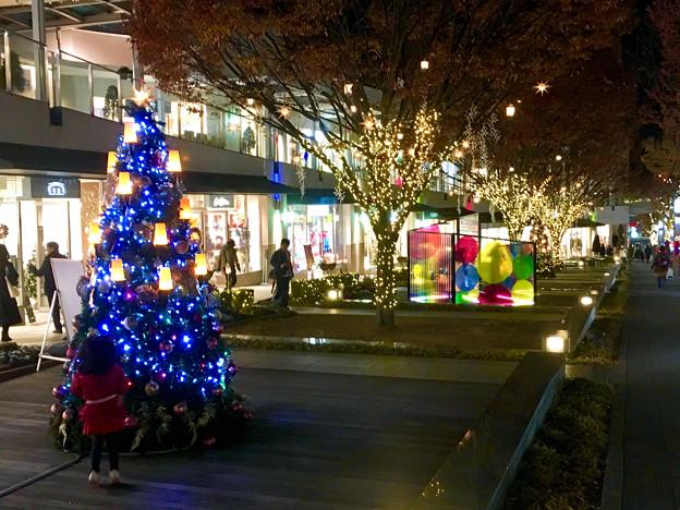 Photos: 星が丘テラスのクリスマスイルミネーション 2017 No - 15