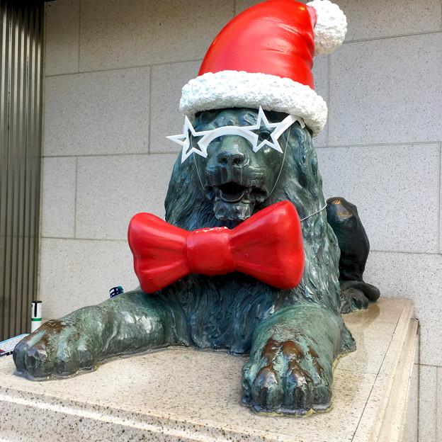 今年はファンキーな格好になってた、クリスマスシーズンの名古屋三越栄店のライオン像 - 2