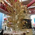 Photos: 大須商店街:招き猫広場のクリスマスイルミネーション