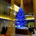 JPタワー名古屋のクリスマスツリー 2017 No - 4