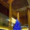 JPタワー名古屋のクリスマスツリー 2017 No - 5