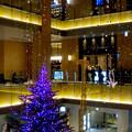 JPタワー名古屋のクリスマスツリー 2017 No - 9