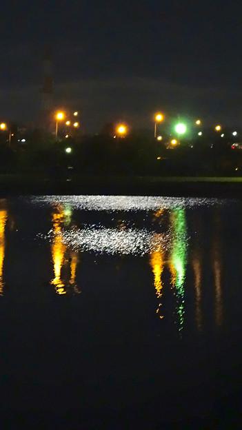 落合公園:東名高速の灯りなどが反射して綺麗だった夜の落合池 - 1