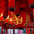 写真: 戌年で賑わう2018年正月の「伊奴(いぬ)神社」 - 18:玉主(たまぬし)稲荷社