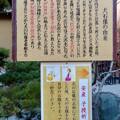 写真: 戌年で賑わう2018年正月の「伊奴(いぬ)神社」 - 29:犬石像の由来