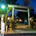 写真: ひっそりとしてた戌年の夜の羊神社 - 1
