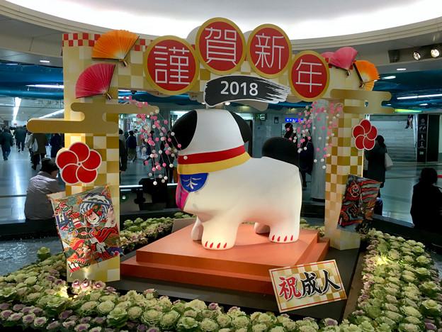 クリスタル広場:戌年にちなんだ犬の置き物は「古代犬」!? - 1