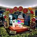 写真: クリスタル広場:戌年にちなんだ犬の置き物は「古代犬」!? - 2