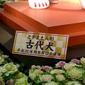 写真: クリスタル広場:戌年にちなんだ犬の置き物は「古代犬」!? - 3