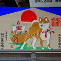 針綱神社の犬の絵馬