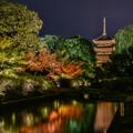 写真: そうだ 京都、行こう 3