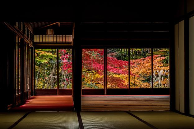 写真: 京の秋 2