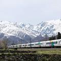 写真: 大糸線 E257系
