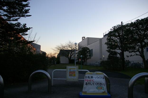 写真: 松竹大船撮影所跡地