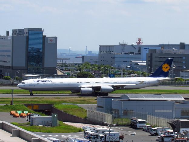 DLH A340-600
