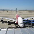 写真: SIA A380