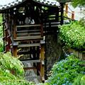Photos: 善峯寺(よしみねじ)幸福地蔵