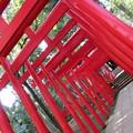 写真: 稲荷神社もある