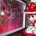 写真: サンタさん来ないかな?