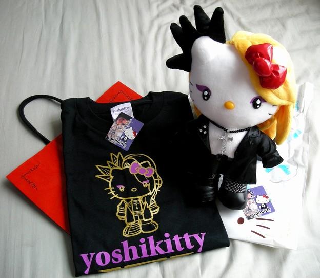 20090621_yoshikitty(1)