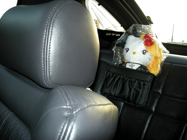 200908_yoshikitty who gets on GTO(1)