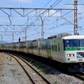 写真: 185系電車