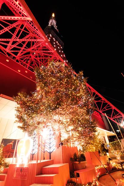 イルミネーションと東京タワー