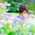 紫陽花の先