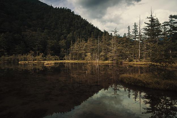 Photos: 日本之秋#1